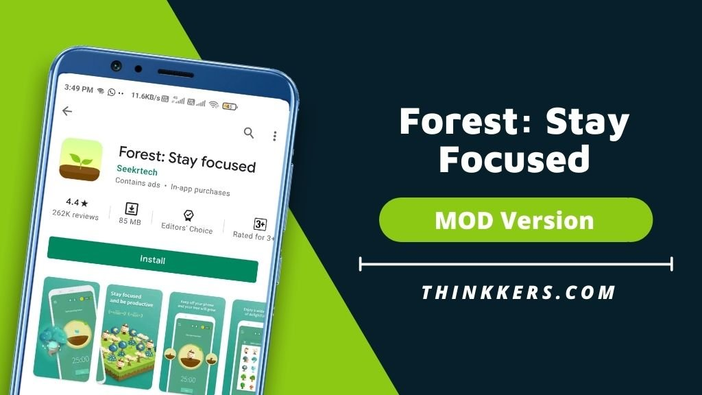 Forest Stay Focused Mod Apk - Copy