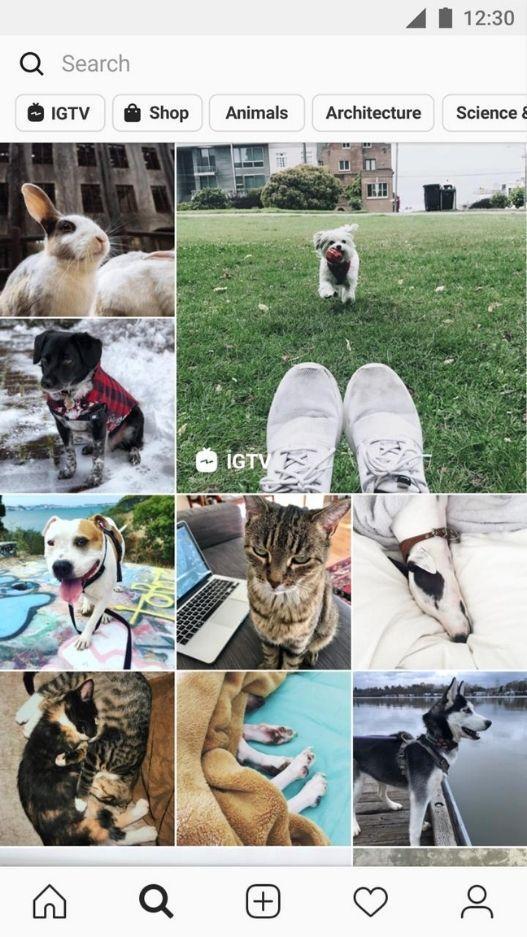Instagram mod download
